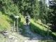 A l'embouchure de la forêt (4 septembre 2005)