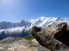 Cairn face au Mont Blanc (8 juin 2014)