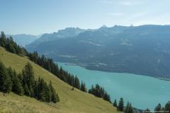 Lac de Brienz (15 septembre 2019)