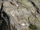 Une marque blanche peinte sur le rocher indique la direction à suivre