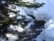 Ruisseau gelé