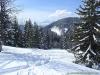Magnifique décor hivernal