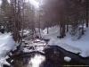 Dans le bois du Paradis