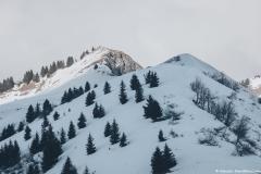 Pointe de Chamossière (2 janvier 2019)