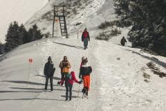 Sentier sur le Col de Joux Plane (2 janvier 2019)