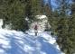 Sentier en forêt (Mars 2008)