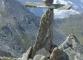 Cairn particulier au Col des Chevaux