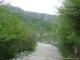 Sentier dans la forêt (5 juin 2006)