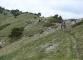 Sentier pour aller au Crêt de la Neige (5 juin 2006)