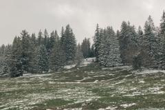 Plaine non loin du Creux-du-Van (5 mai 2019)