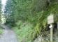 Départ du sentier (1er mai 2006)