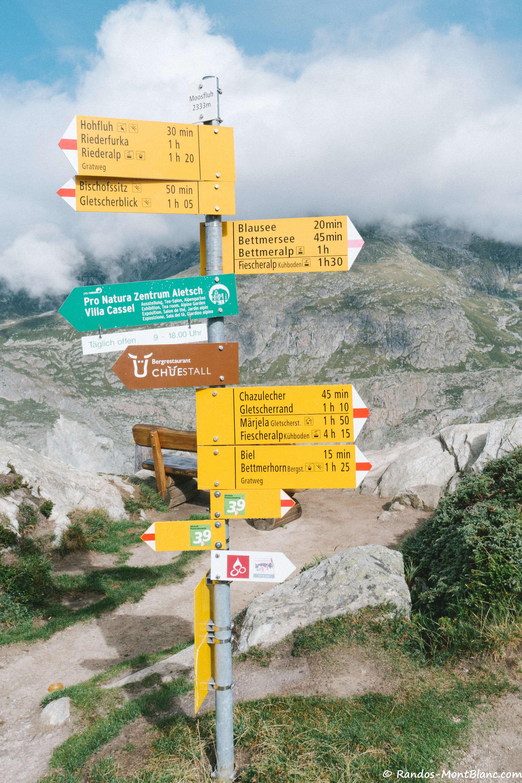 Aletsch Glacier — Randos-MontBlanc