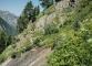 Sentier menant à Vesevey et à la Fenêtre d'Arpette (2 juillet 2015)