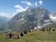 Aiguille de Leschaux depuis le Grand Col