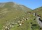 Moutons au Grand Col Ferret