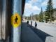 Balisage jaune que l'on retrouve tout au long du parcours (23 avril 2017)