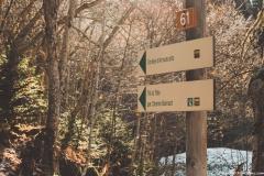 Suivre la direction de la Combe d'Armancette (25 novembre 2018)