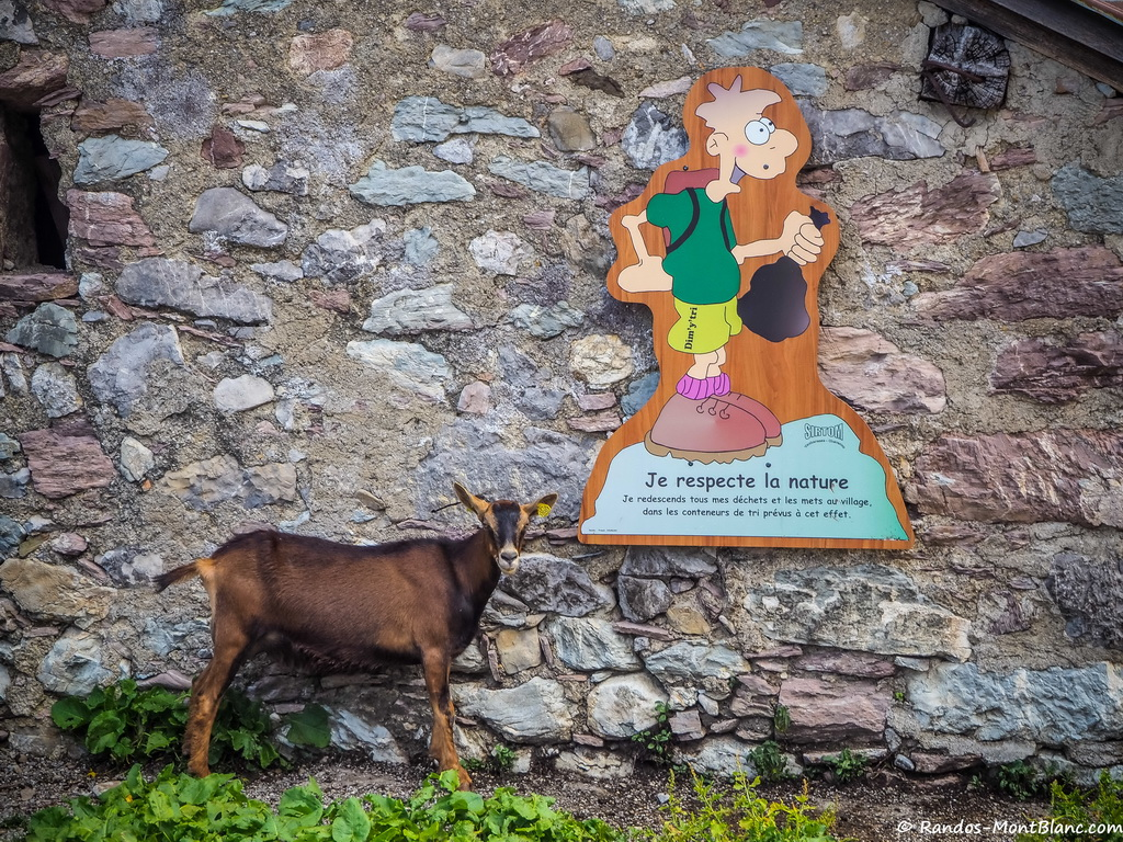 Lac De Darbon Randos Montblanc Tri Chvre 19 Juillet 2015