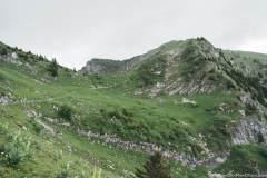 La Crête du Moléson est en vue (21 juin 2020)