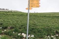 Tourner à gauche pour rejoindre le sommet du Moléson (21 juin 2020)
