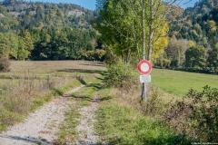 Chemin menant aux Meulières de Grande Gueule (14 octobre 2017)