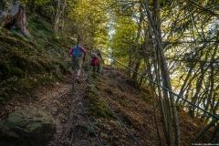 Petit passage escarpé pour rejoindre les Meulières de Grande Gueule (14 octobre 2017)