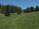 Alpage de Pralioux Dessus (31 mai 2019)