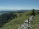 Vue sur les Alpes depuis les pentes du Mont d'Or (31 mai 2019)