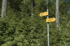 Dernière intersection avec la route goudronnée où l'on continuera de suivre la direction du Mont d'Or (31 mai 2019)