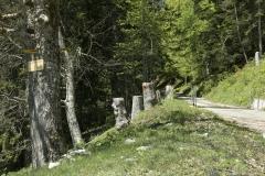 Route goudronnée allant vers Pralioux Dessus (31 mai 2019)