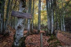 Suivre la direction du Forchat (1er octobre 2017)
