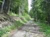Sentier (13 mai 2007)