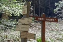 Départ du sentier au parking du Pré Vernet où il faudra suivre le sentier partant à droite allant au Col des Sauts (24 juin 2018)