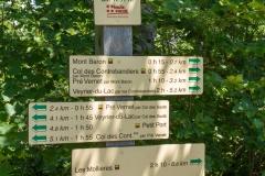 Arrivé au Mont Baron où l'on continuera vers le Mont Baron (24 juin 2018)