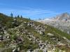 Sentier sur la Montagne du Peclerey (11 septembre 2010)