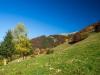 Alpage de Chapotier (29 octobre 2016)