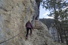 Les marches en bois et le câble sécurisent la progression (12 mai 2019)