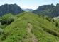Sentier au sommet de la Pointe d'Ardens
