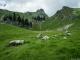 Vue sur le Col de Vésinaz et la Pointe de Chavasse (26 juin 2016)