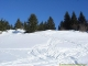 Sentier dans la fraiche (15 janvier 2006)