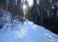 Sentier au départ des Granges (hiver 2006)