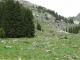 La forêt qu'il faut longer (30 mai 2009)