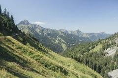 Vue sur le Mont de Grange (18 août 2019)