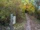 Le sentier se poursuit dans la forêt (13 octobre 2017)
