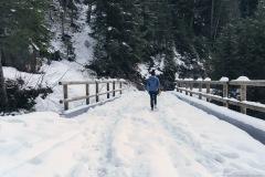 Pont sur le Torrent de l'Epine (25 décembre 2019)
