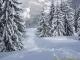 Sentier sous la neige (12 mars 2006)