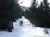 Progression dans la forêt (18 février 2007)