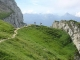 Sentier de la montée à la Tournette