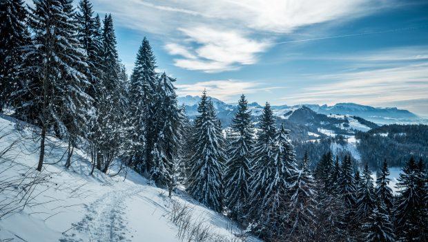 Vue-sur-les-Brasses-et-les-Bornes-en-arrière-plan-22-janvier-2016