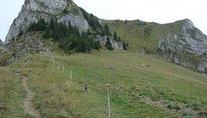 Mont Billiat